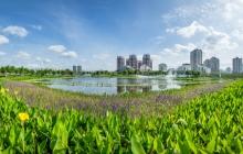 三亚东岸湿地公园