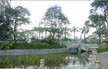 华建半岛豪庭二期园林景观工程