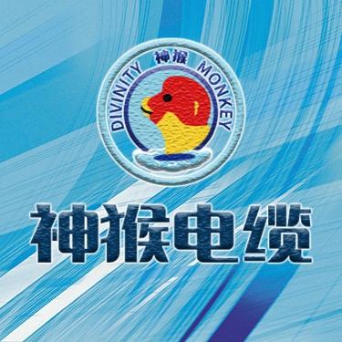 湘潭市特種線纜股份有限公司
