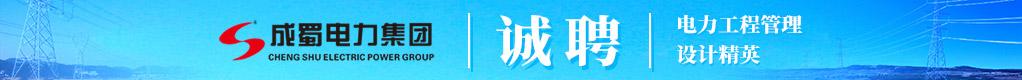 成蜀电力集团有限公司鎷涜仒淇℃伅