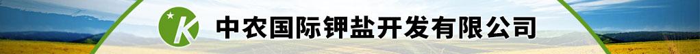 中农国际钾盐开发有限公司招聘信息