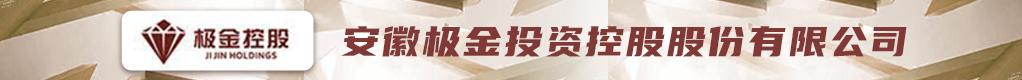 安徽极金投资控股股份有限公司招聘信息