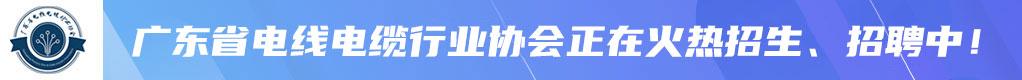 广东省电线电缆行业协会招聘信息
