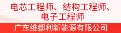 广东维都利新能源有限公司招聘信息