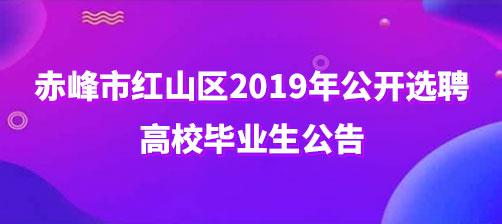 赤峰市红山区2019年公开选聘高校毕业生公告