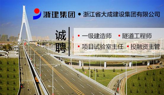 浙江省大成建设集团有限公司