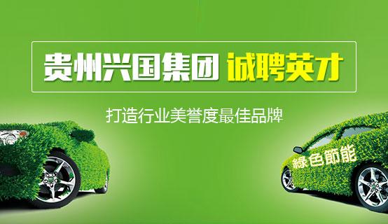 贵州兴国新动力科技有限公司