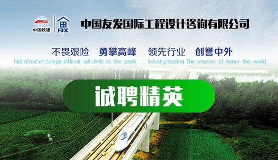 中国友发国际工程设计咨询有限公司