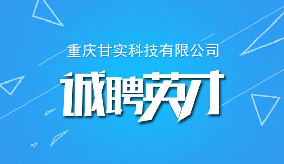 重庆甘实科技有限公司