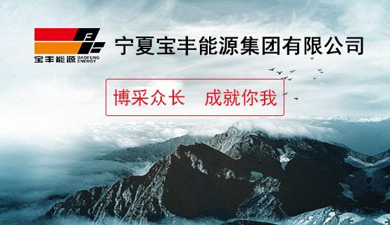 宁夏宝丰能源集团股份有限公司招聘信息