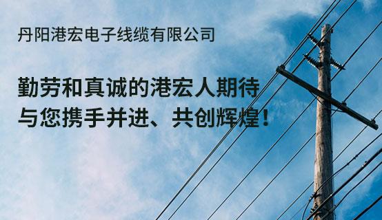 丹陽港宏電子線纜有限公司