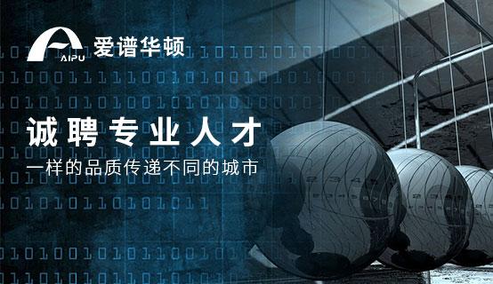 上海愛譜華頓電子工業有限公司