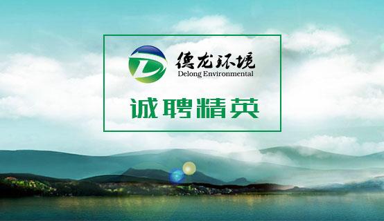 河北德龙环境工程股份有限公司