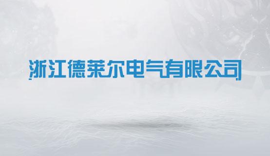 浙江德莱尔电气有限公司招聘信息