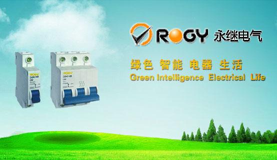 上海永继电气股份有限公司