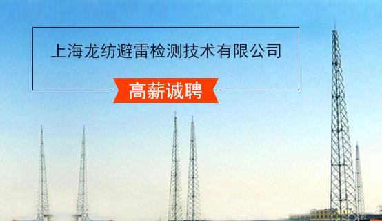 上海龙纺避雷检测技术有限公司