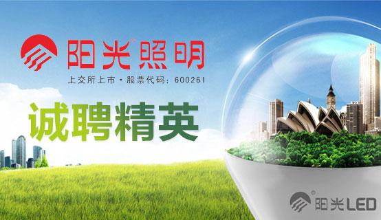 浙江阳光照明电器集团股份有限公司招聘信息