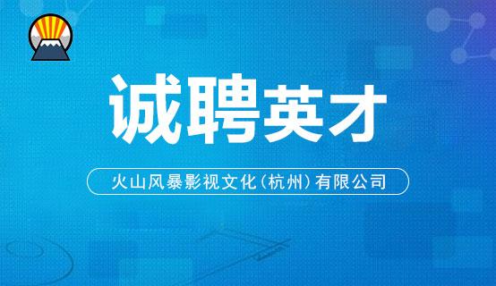 火山风暴影视文化(杭州)有限公司