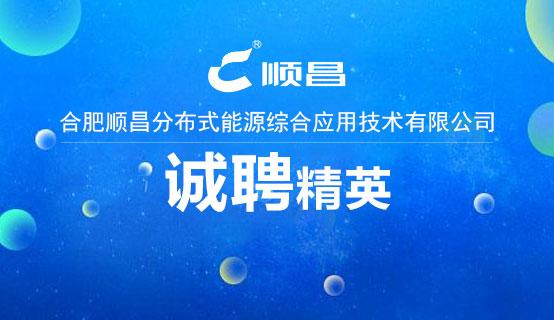 合肥顺昌分布式能源综合应用技术有限公司招聘信息