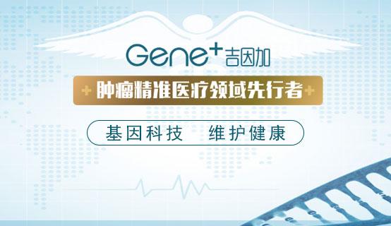 北京吉因加科技有限公司招聘信息