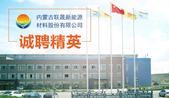 内蒙古联晟新能源材料股份有限公司