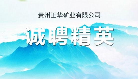贵州正华矿业有限公司