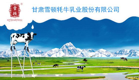 甘肃雪顿牦牛乳业股份有限公司招聘信息