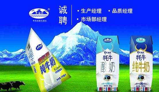 青海雪峰牦牛乳业有限责任公司招聘信息