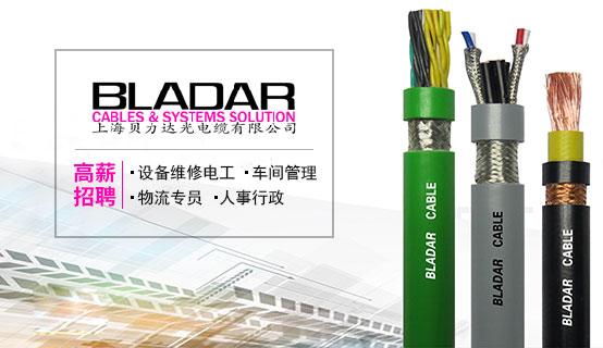 上海贝力达光电缆有限公司