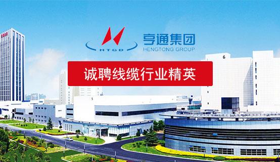 江苏亨通电力特种导线有限公司