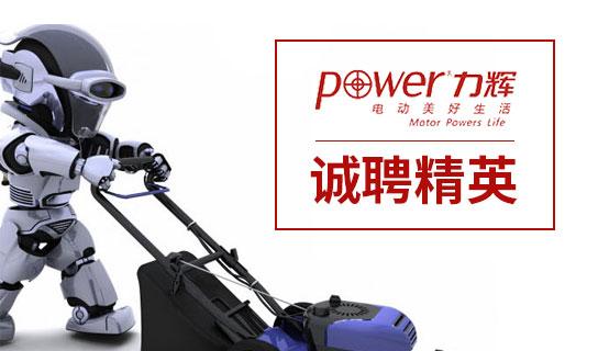 深圳市力辉电机有限公司