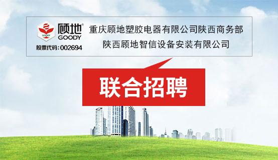 重庆顾地塑胶电器有限公司陕西商务部