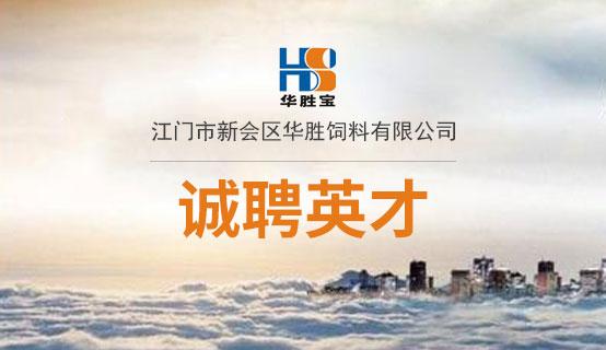 江门市新会区华胜太原股票配资有限炒股配资招聘信息