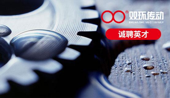 浙江双环传动机械股份有限公司��Ƹ��Ϣ