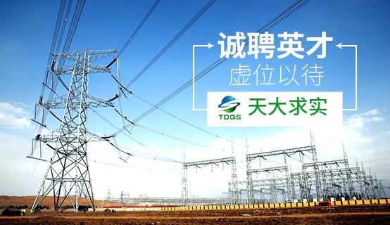天津天大求实电力新技术股份有限公司招聘信息