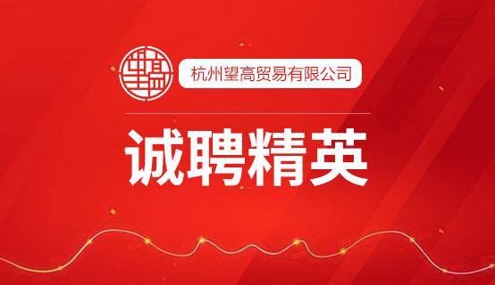 杭州望高贸易有限公司
