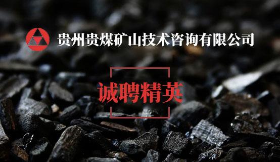 贵州贵煤矿山技术咨询开户彩金无需申请网站