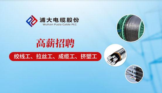 武汉浦大电缆有限公司