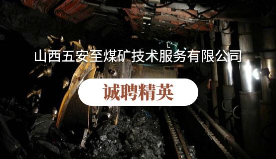 山西五安至煤矿技术服务有限公司