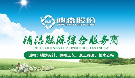 广州迪森热能设备有限公司