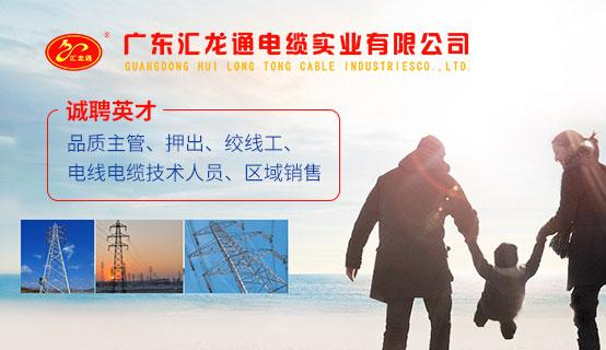 广东汇龙通电缆实业有限公司招聘信息
