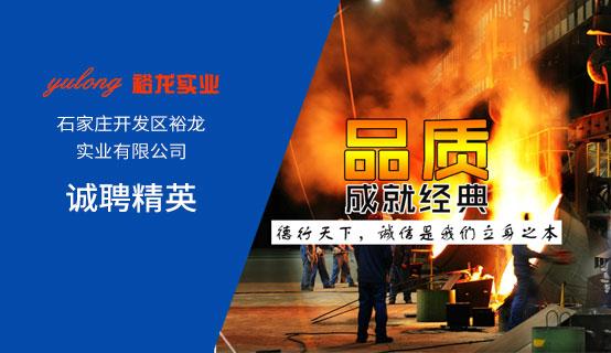 石家庄开发区裕龙实业有限公司招聘信息