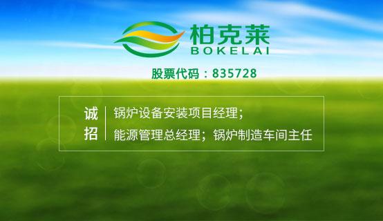 珠海市柏克莱能源科技股份有限公司��Ƹ��Ϣ