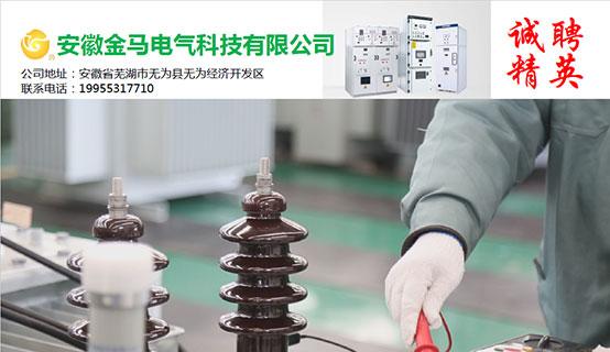 安徽金马电气科技有限公司招聘信息