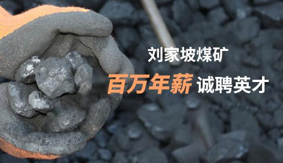 镇雄县刘家坡煤矿有限公司招聘信息