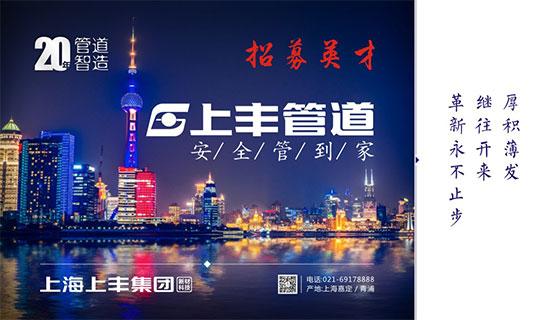 上海上丰集团有限公司招聘信息