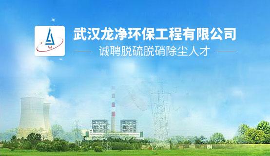 武汉龙净环保工程有限公司招聘信息