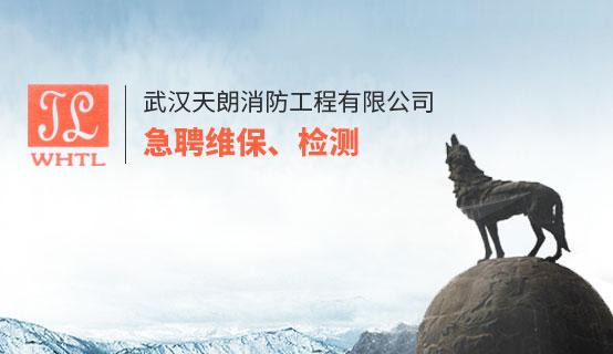 武汉天朗消防十大博彩公司排名招聘信息