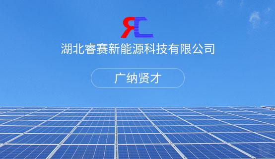 湖北睿赛新能源科技有限公司招聘信息