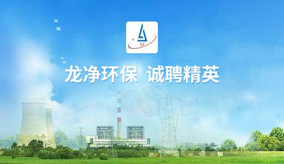 武漢龍凈環保工程有限公司招聘信息
